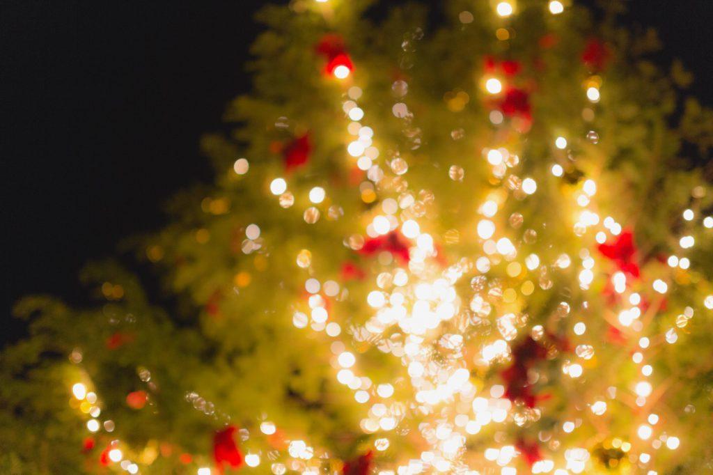 イルミネーションされたクリスマスツリー
