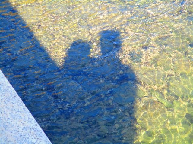 草原に映るカップルの影