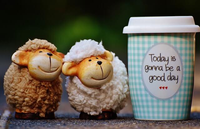 羊のぬいぐるみ2体とカフェのカップ