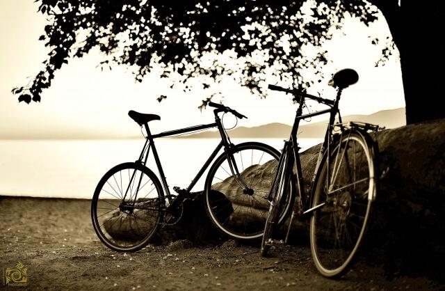 夕暮れに木の横にある2台の自転車