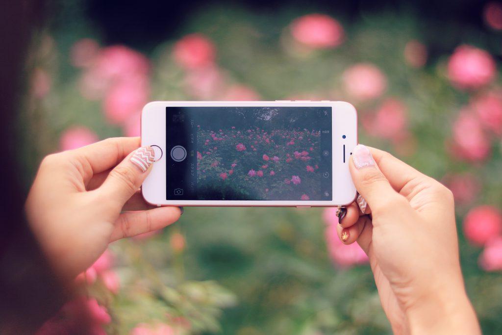 花を撮影中のスマートフォン