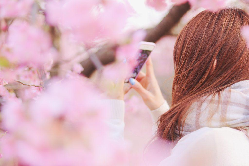 桜に取り囲まれた場所でスマホのカメラを構える女の子