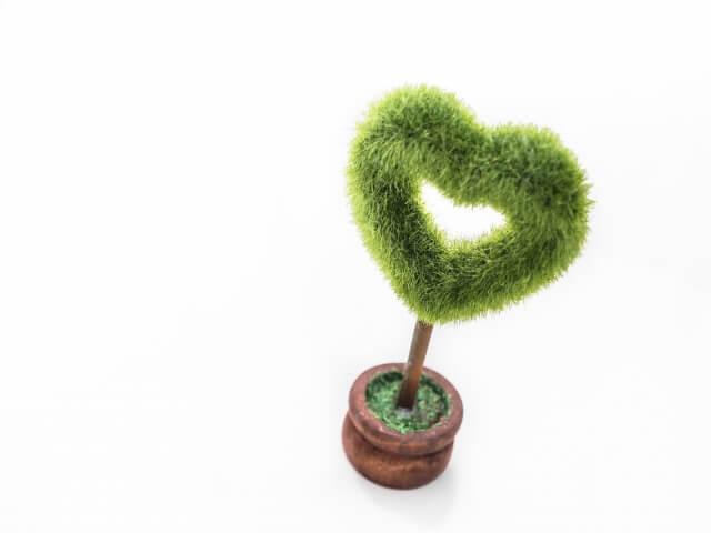 愛を育む植物