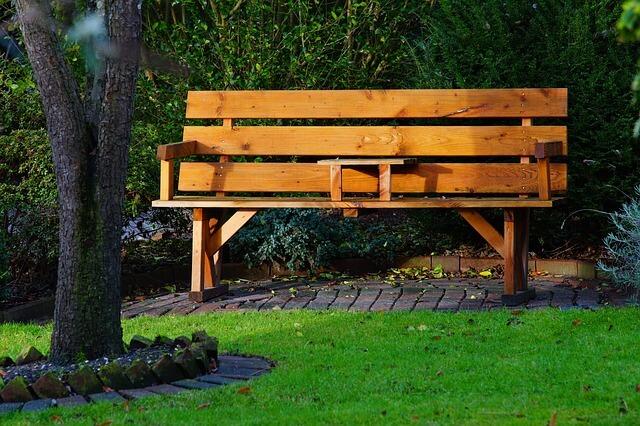 森林のある木製のベンチ