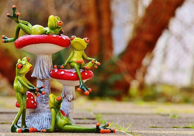 ベニテングダケの上に乗るカエル