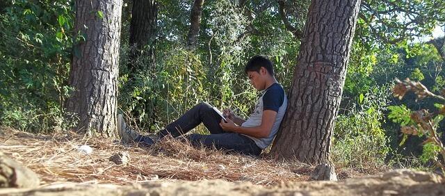 木の下でタブレットをいじる男性