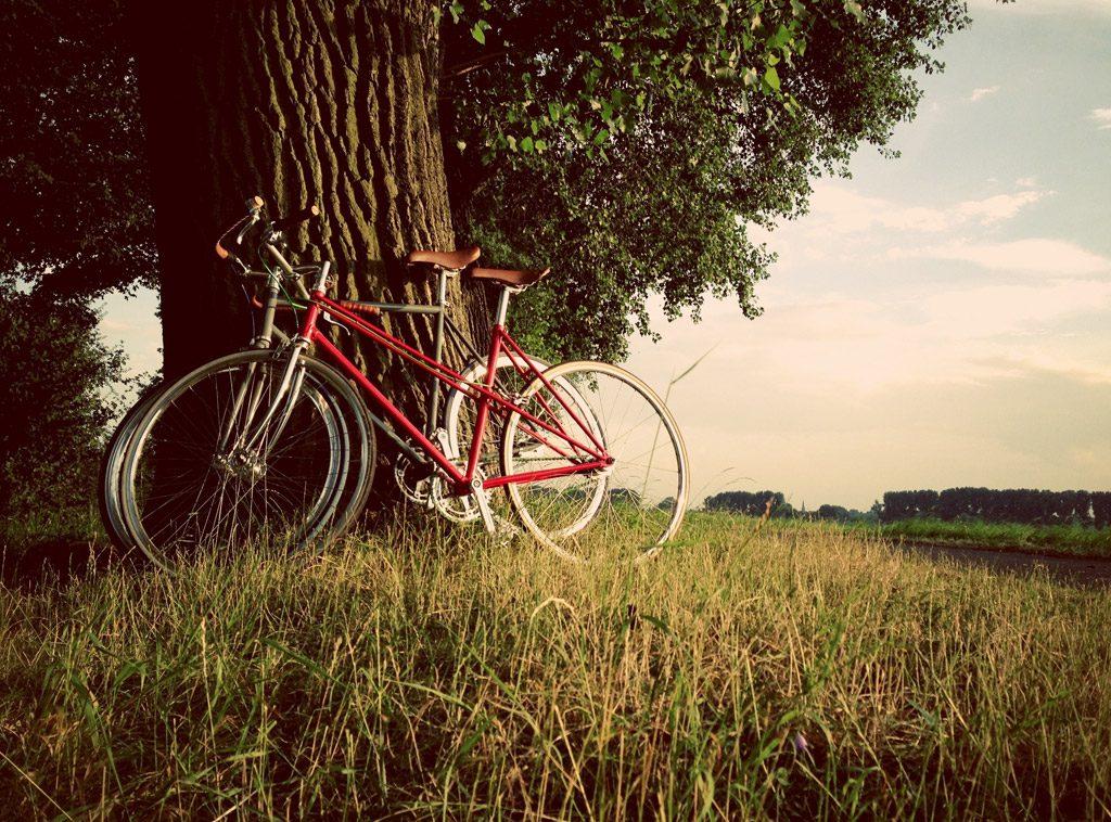 現実逃避のサイクリング