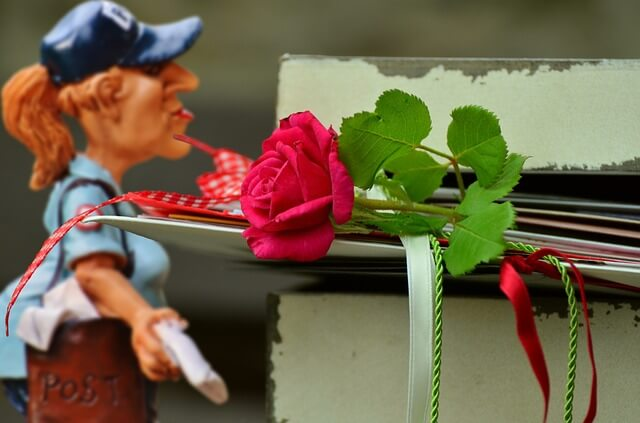 プレゼントのバラ
