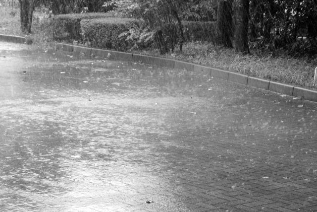 雨で中止のデート