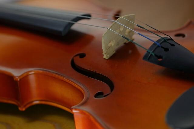 バイオリンが趣味の女性